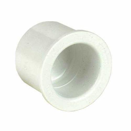 1/2 in. PVC Plug - Slip