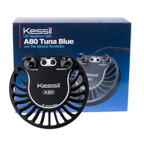 Tuna Blue - A80 1