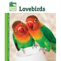Animal Planet Lovebirds