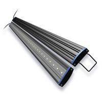 AquaticLife Reno Blue/White LED Fixture [48 in. 21w]