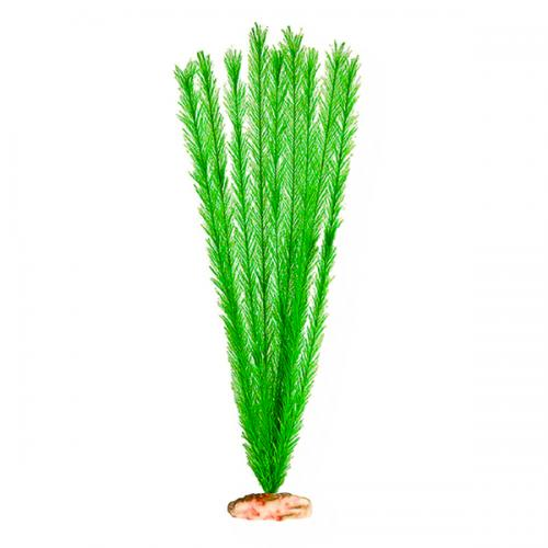 Soft Foxtail Emerald Green - X-Large