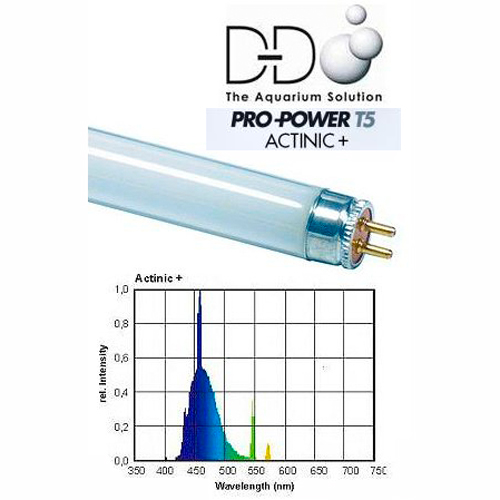 24 in. D-D POWER PRO Actinic+ 24w T5 Lamp 1