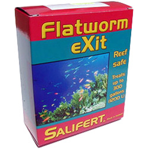 Flat Worm Exit