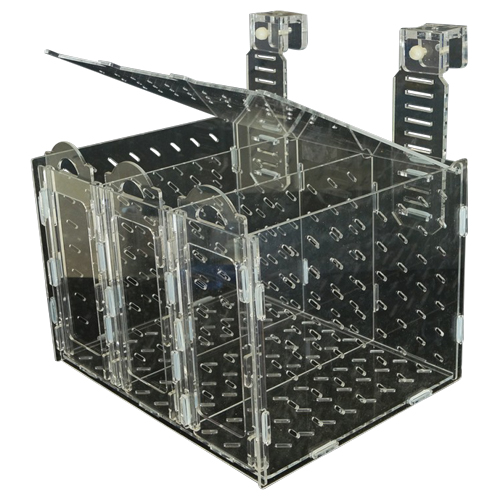 Collapsible Acclimation Box [X-Large] 1